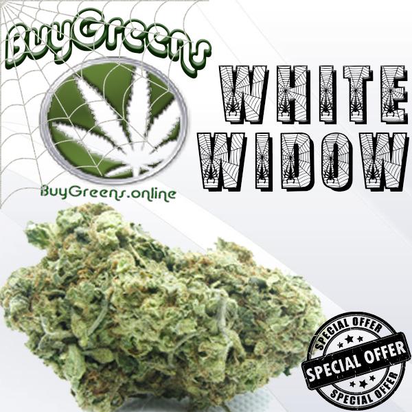 White Widow - BuyGreens.online