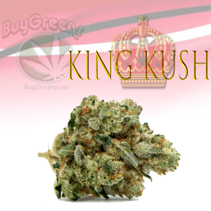 King Kush - BuyGreens.ca