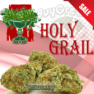 Holy Grail - BuyGreens.online