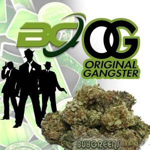 BC OG - BuyGreens.Online