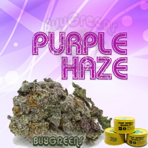 Purple Haze-BuyGreens.online