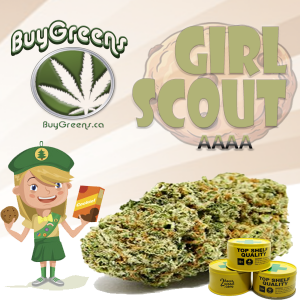 Girl Scout - BuyGreens.ca