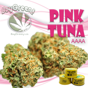 Pink Tuna-BuyGreens