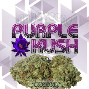 Purple Kush - BuyGreens.Online