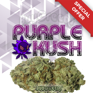 Purple Kush - BuyGreens.online