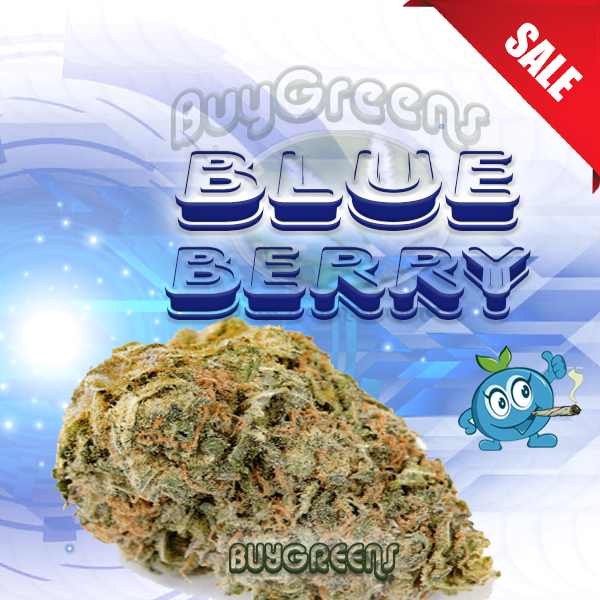 BlueBerry - BuyGreens.online