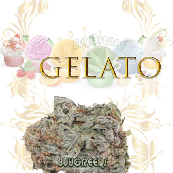 Gelato - BuyGreens.online