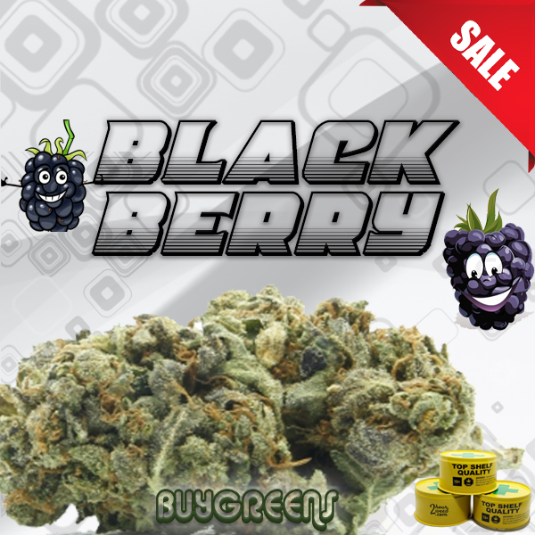 BlackBerry - BuyGreens.Online
