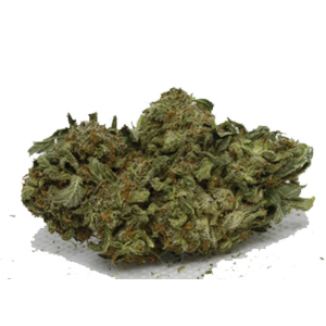 Bubble Gum - BuyGreens.online
