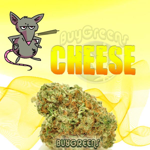 Cheese - BuyGreens.online
