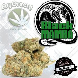 Black Mumba - BuyGreens.ca