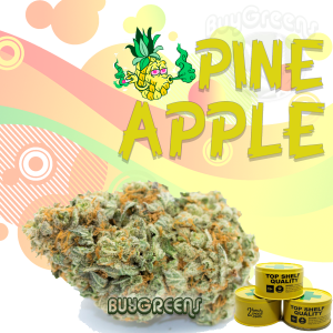 Pineapple - BuyGreens.online