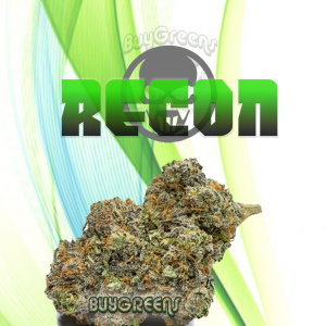 ReCon - BuyGreens.Online