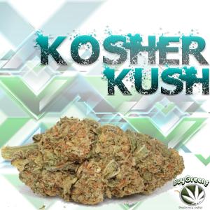 Kosher Kush - BuyGreens.Online