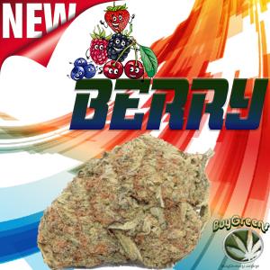 Berry OG - BuyGreens.online