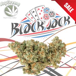 Blackjack - BuyGreens.online
