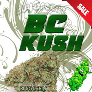BC Kush - BuyGreens.online
