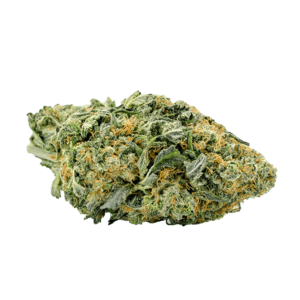 Northern Light - BuyGreens.online