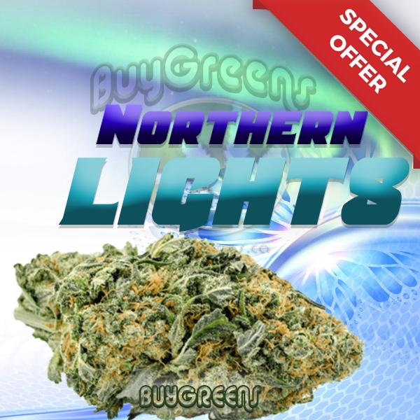 Northern Lights - BuyGreens.online
