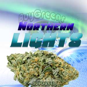 Northern Lights - BuyGreens.online