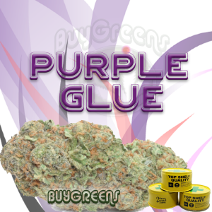 Purple Glue - BuyGreens.online