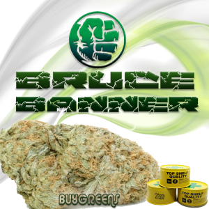 Bruce Banner - BuyGreens.Online