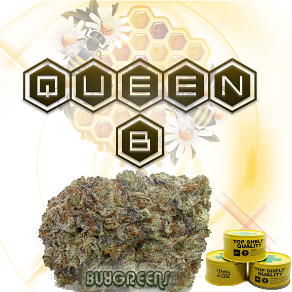 Queen B - BuyGreens.Online