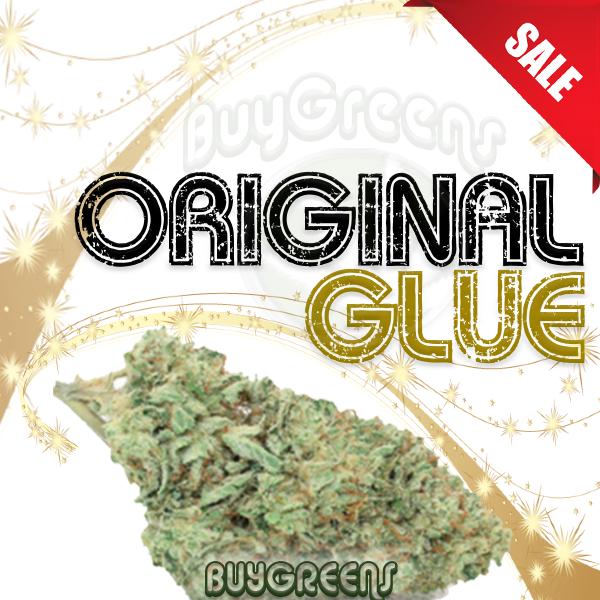 Original Glue - BuyGreens.Online