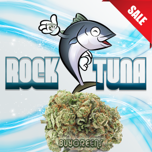 Rock Tuna - BuyGreens.Online
