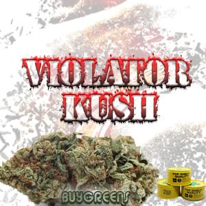 Violator Kush - BuyGreens.online