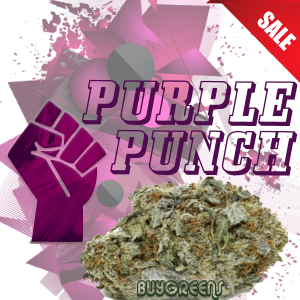 Purple Punch - BuyGreens.Online