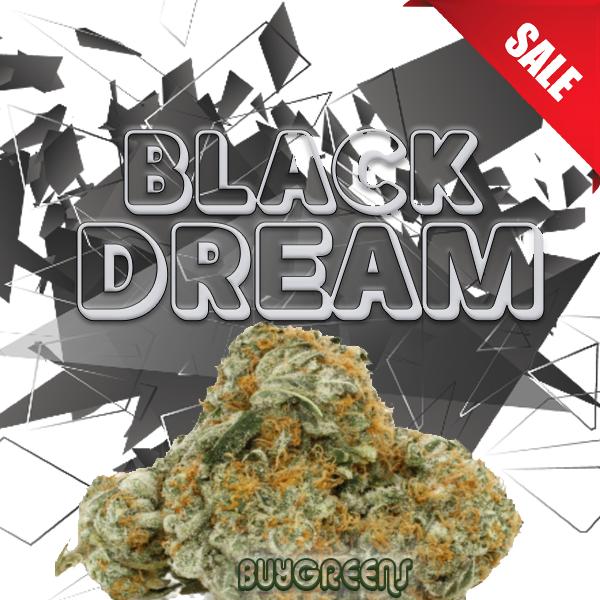 Black Dream - BuyGreens.Online