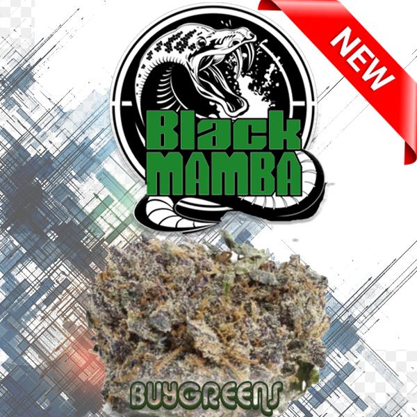 Black Mumba - BuyGreens.Online