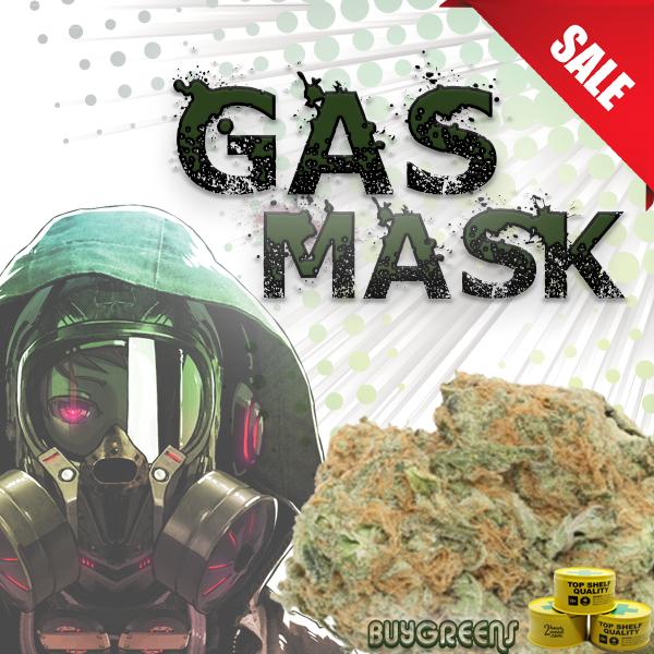 Gas Mask - BuyGreens.Online